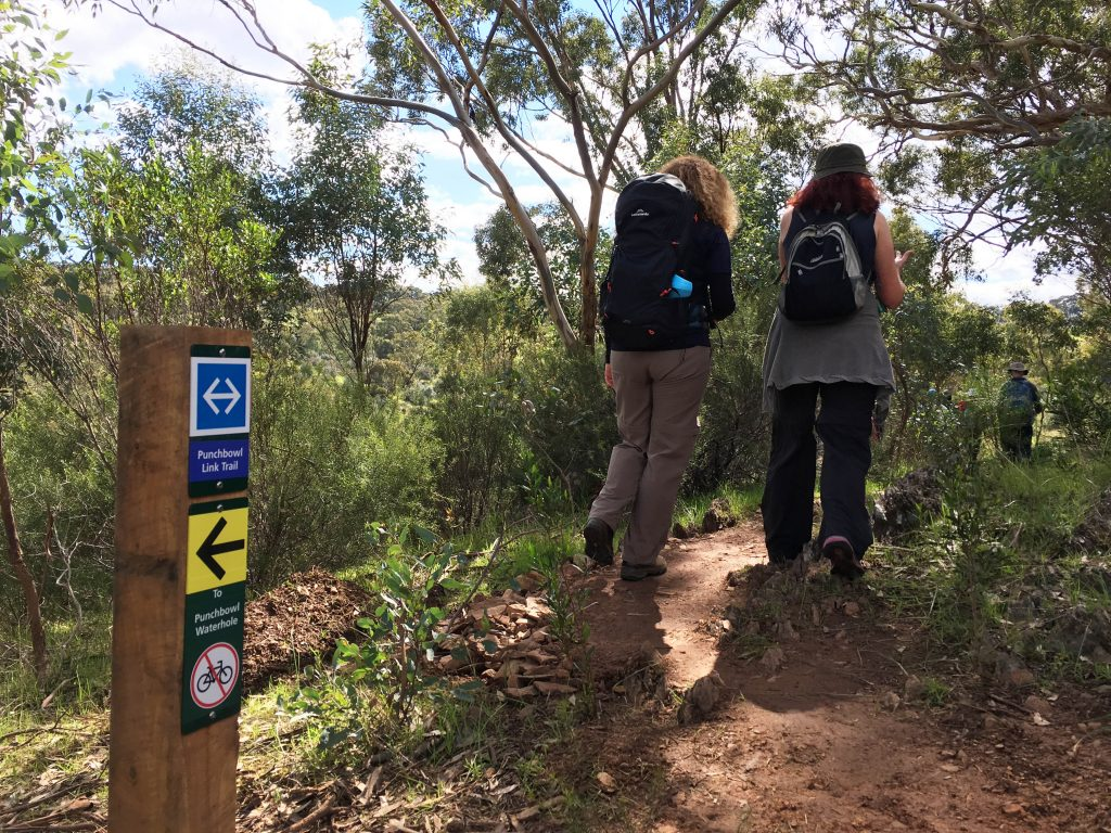 Walking the Punchbowl Link Trail