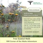 Free Guided Walk of Waite Arbotetum