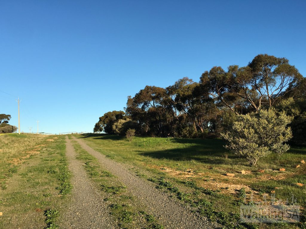 Old Coach Road is a fire track that follows the ridge line up the hill