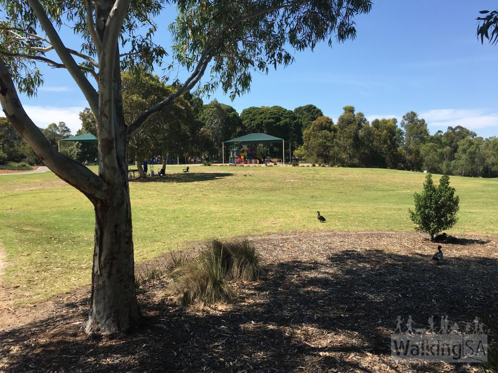 Playgrounds and picnic areas in Thorndon Park