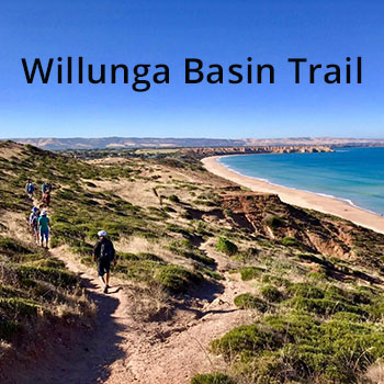 Willunga Basin Trail