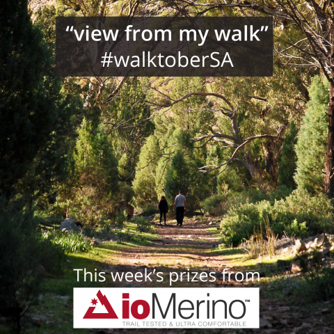 "Share your ""view from my walk"" for a chance to win a weekly prize throughout October"