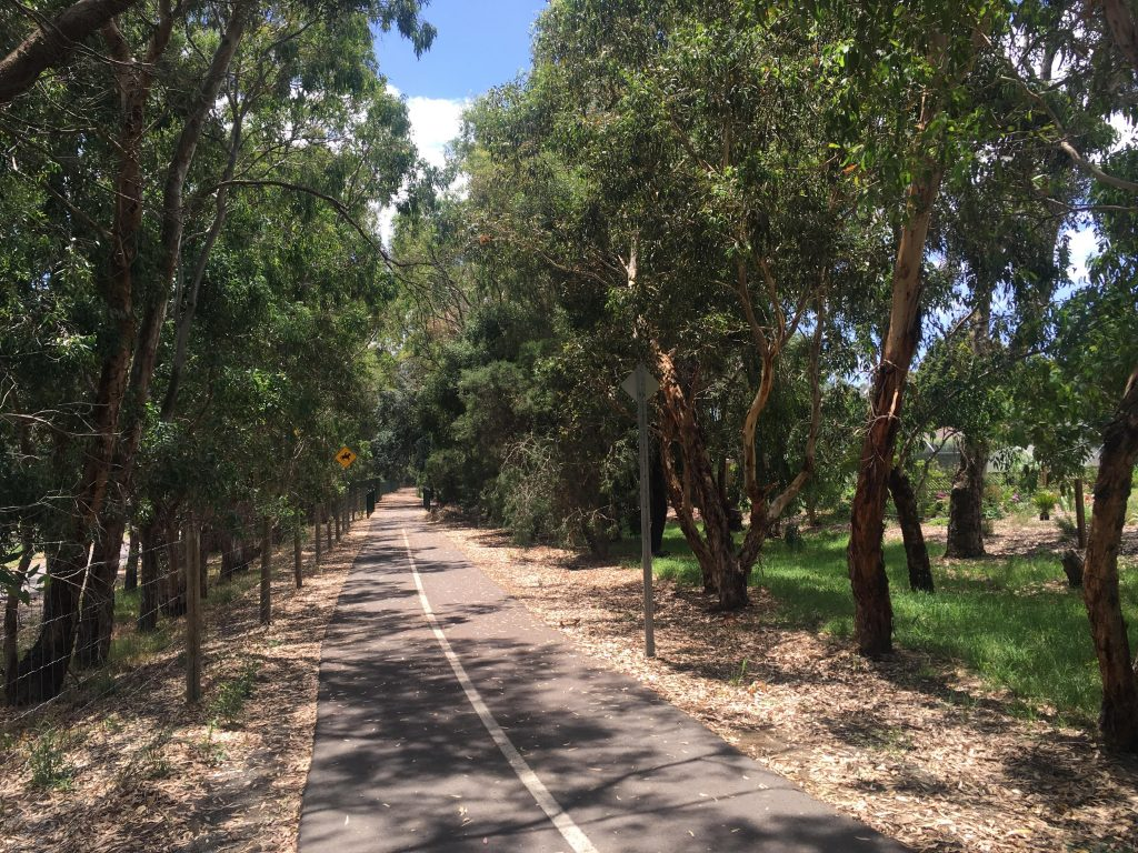 Amy Gillett Bikeway is a shared-use path, used by lots of cyclists and some walkers