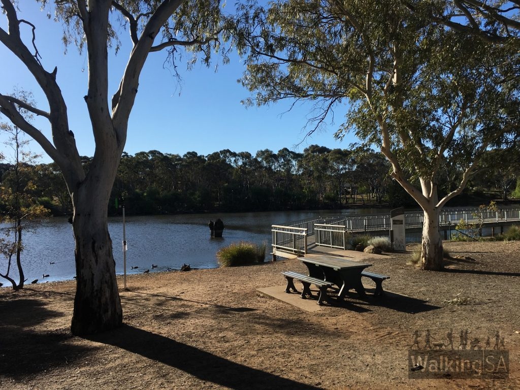 Picnic area and boardwalk at Wynn Vale Dam