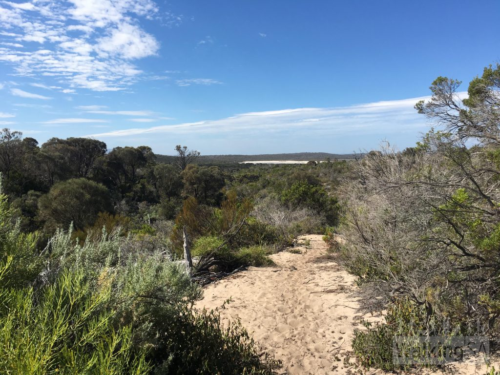 Some inland views from the top of s sanddune on the Black Rocks Hike