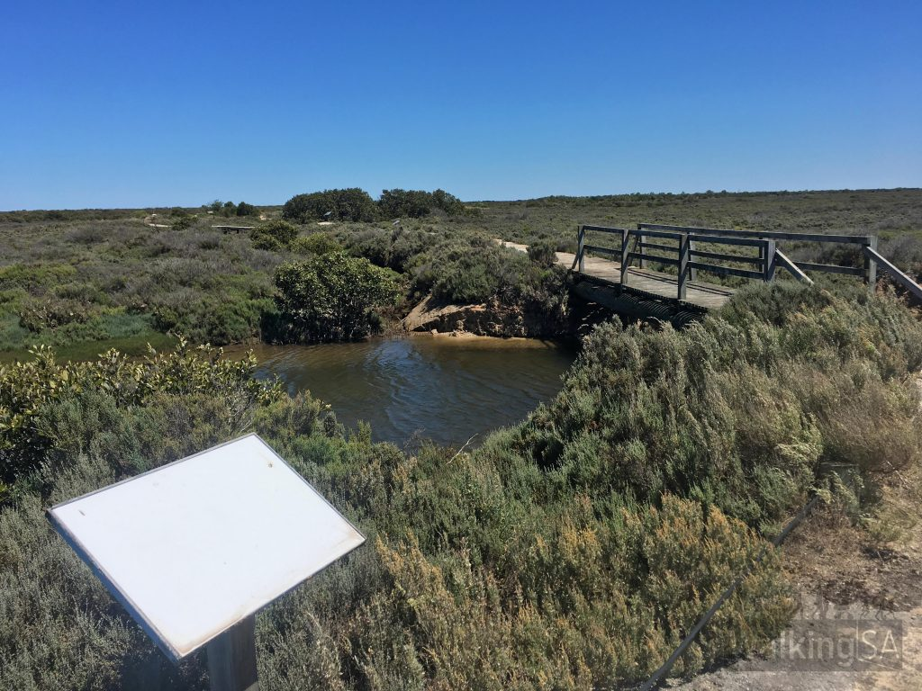 The Samphire Discovery Trail was built in 2000, but is need of a bit of a love. Some of the interpretive signs are missing or faded, but nonetheless the remaining ones are very interesting to read