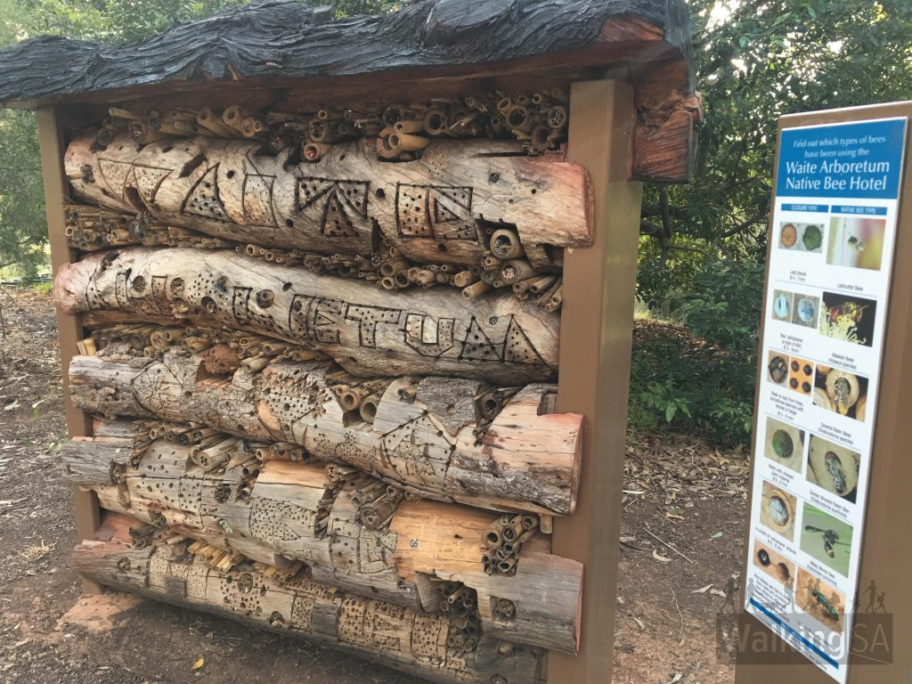 The bee hotel provides nesting opportunities for native bees