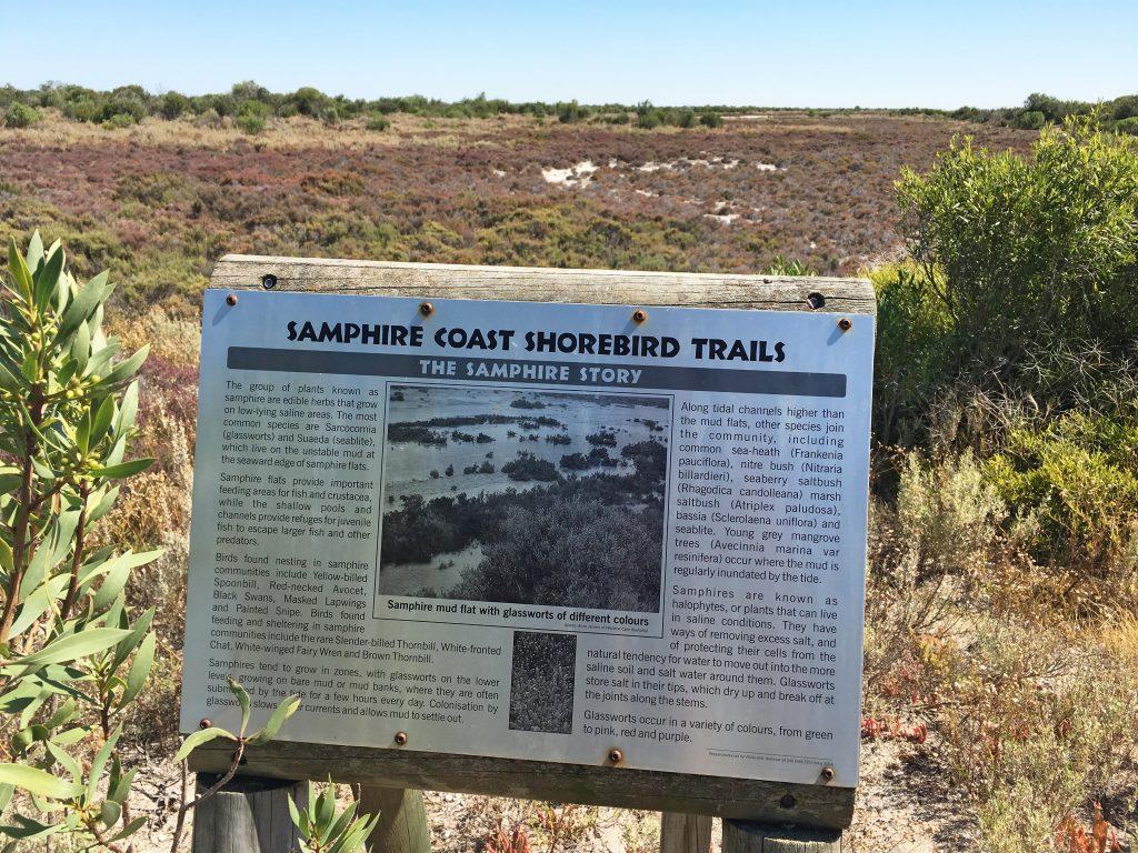 Third Creek Trail, Samphire Coast Shorebird Trails, Thompson Beach