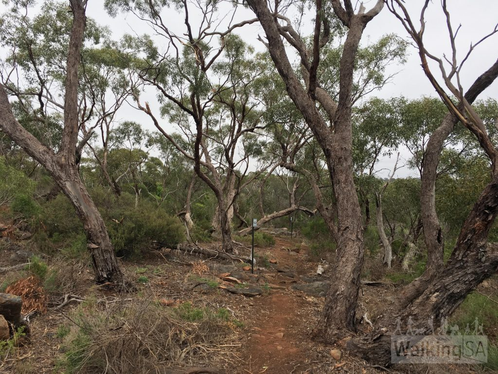 Jailhouse Rocks Loop trail