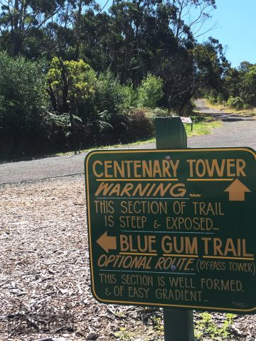 The Blue Gum Trail (to the left) offers an alternative to the steep walk up to and down from the Centenary Tower
