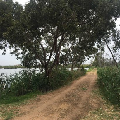 Riverglades Community Wetlands Walking Trail, Murray Bridge