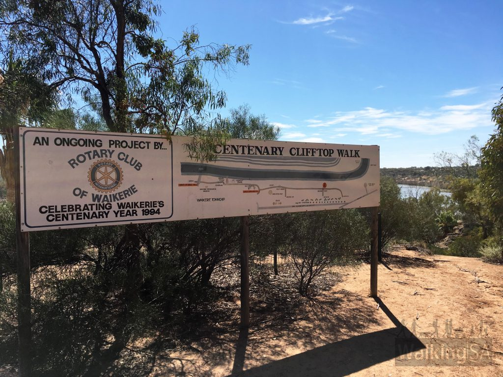 The Waikerie Clifftop Walk was established in 1994 by the Rotary Club of Waikerie