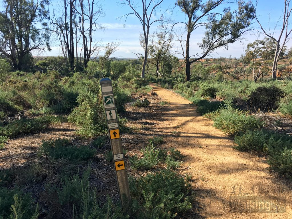 The Wilabalangaloo Trail loops are well marked