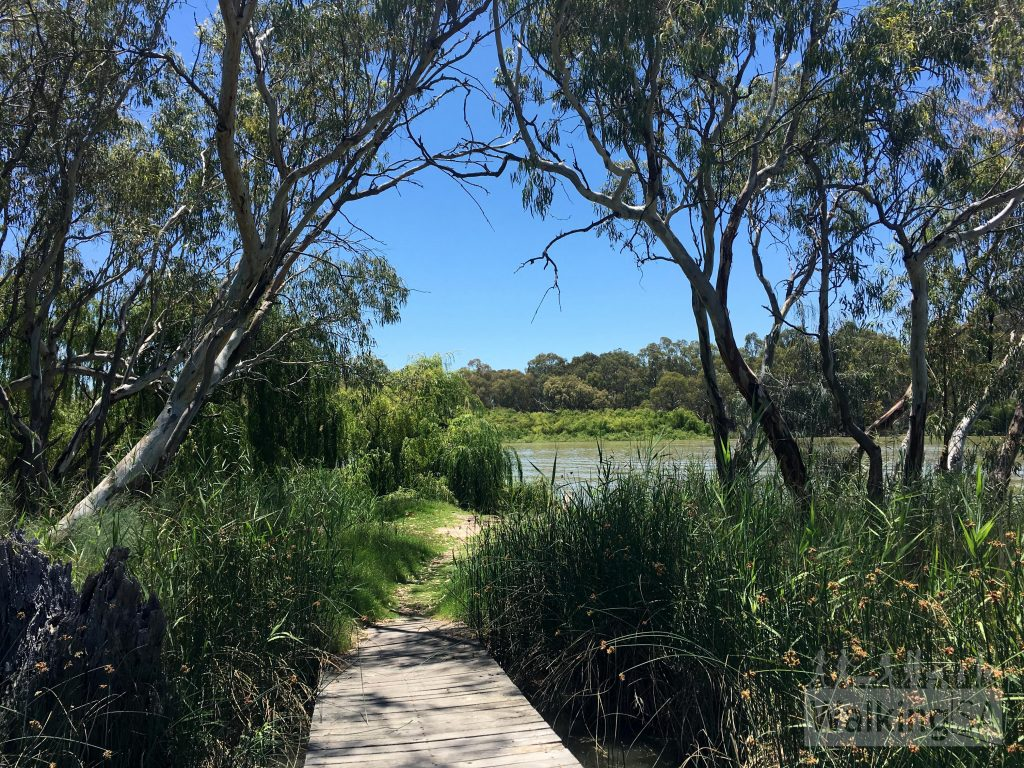 The boardwalk near the caravan park leads from the riverbank to a small island