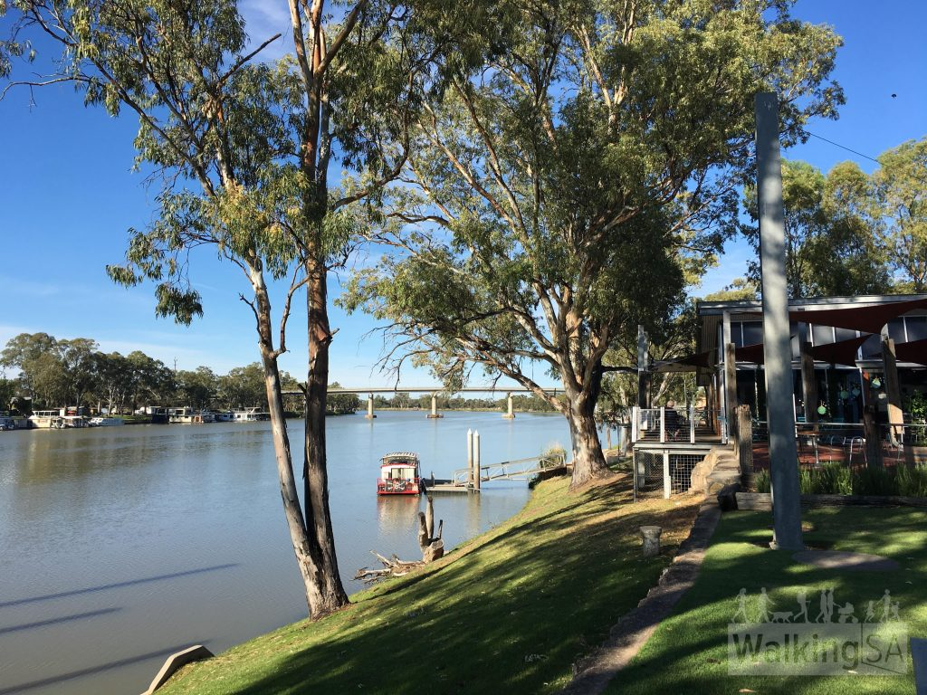 The river and cafe at Berri