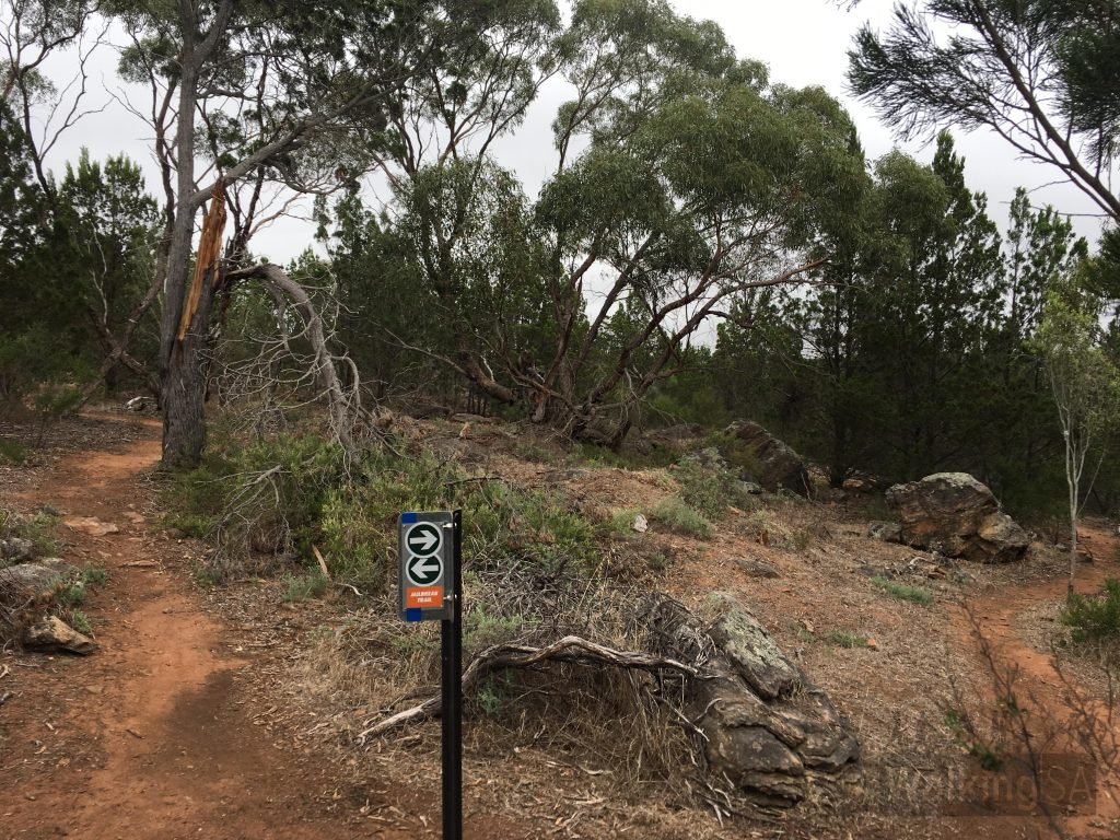 Trails in Kinchina Conservation Park