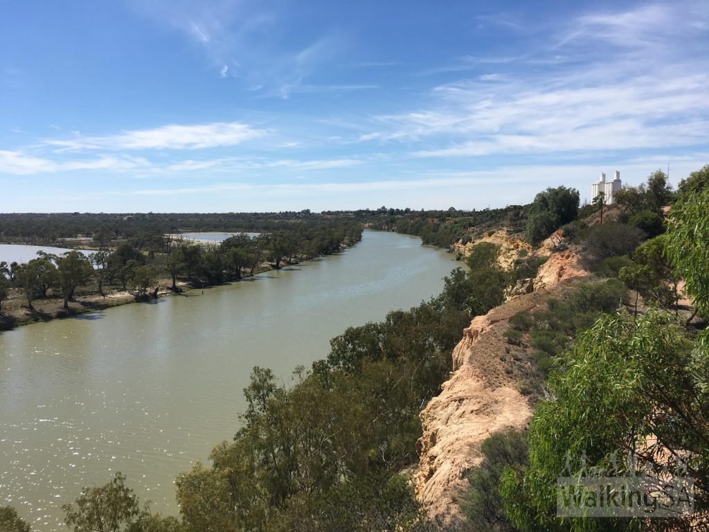 View of the River Murray on the walk