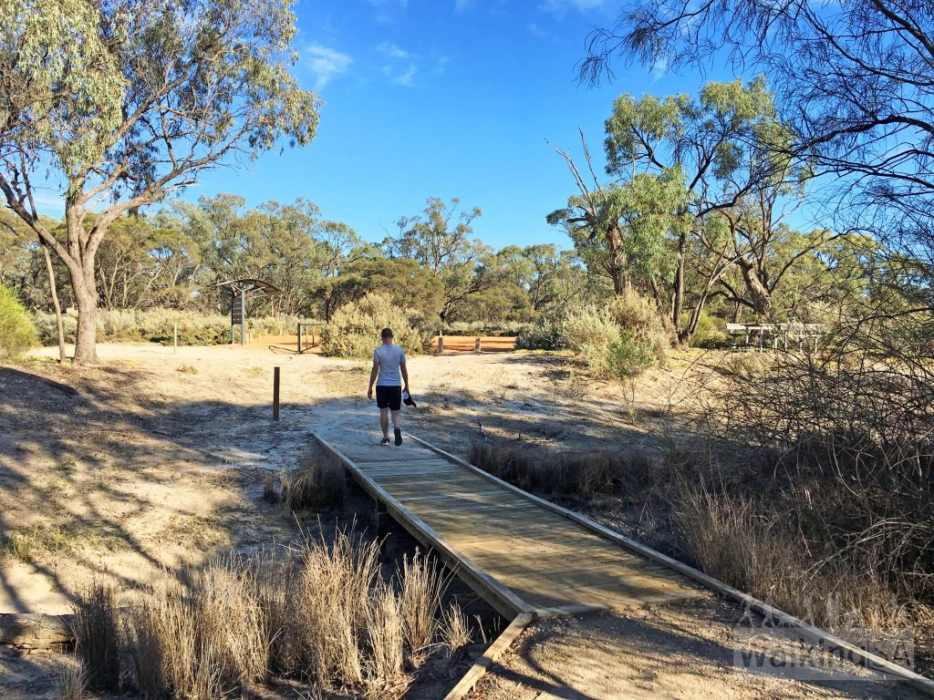 Walking the Ngak Indau Wetland Trail
