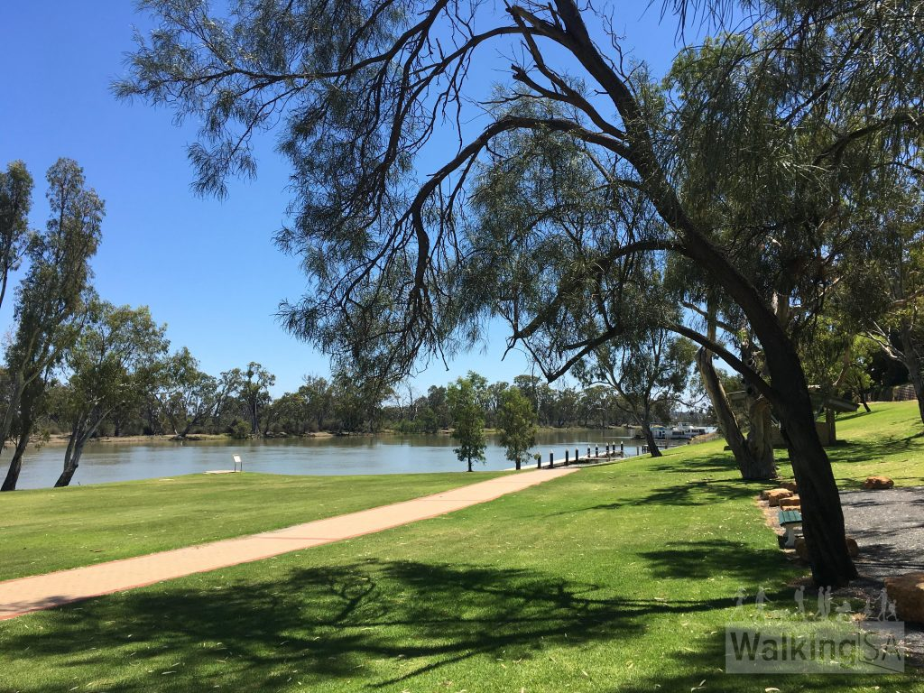 Walking trail beside the wharf at Loxton