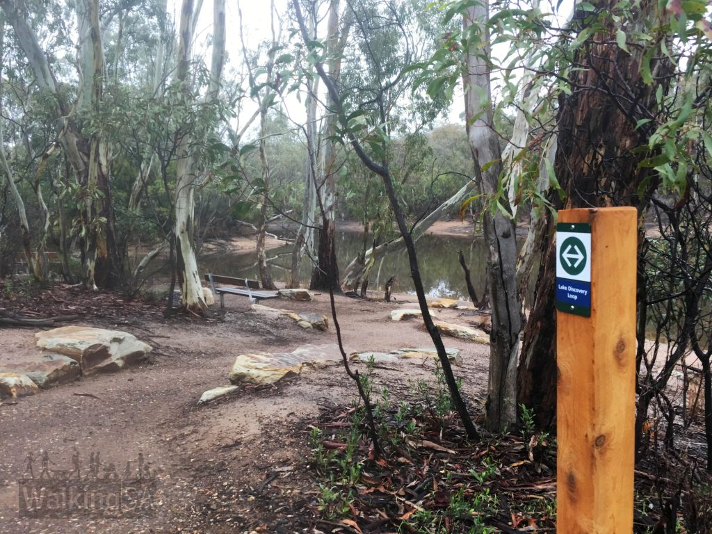 The Lake Discovery Walk is a wheelchair accessible hiking trail