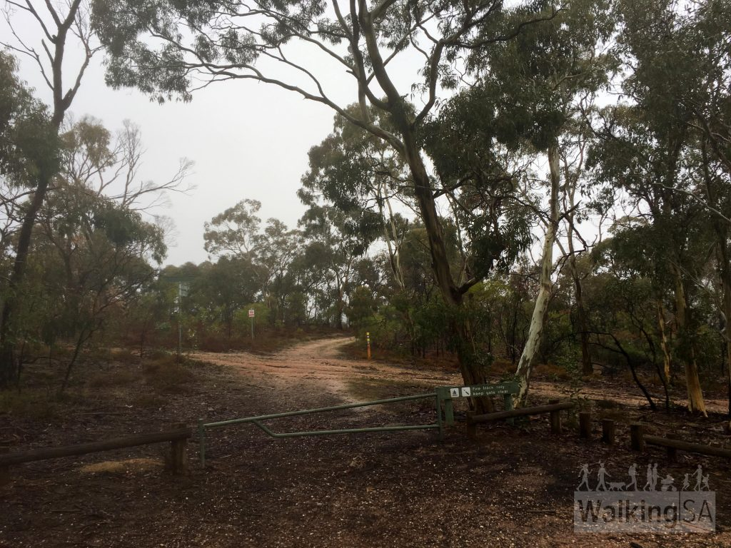 The trailhead of the Mack Creek Hike and Horseplay Trail at the carpark called Mack Creek Hike Carpark (only 500m beyond the main Para Wirra Conservation Park entrance)