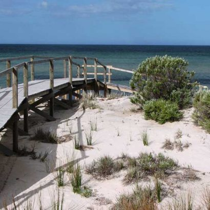 Arno Bay Estuary Boardwalk