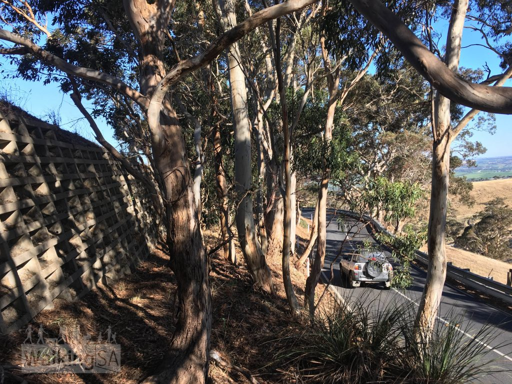 At some points the trail takes you along narrow ledges in close proximity to Old Willunga Hill Road