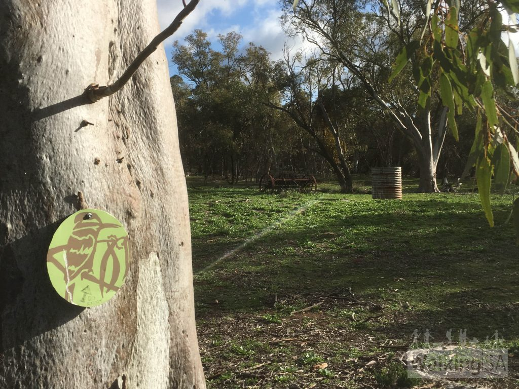 A fourth trail, the Kookaburra Trail, follows the Monitor Loop out to nearby Kookaburra Creek Retreat. It's marked with these kookaburra symbols.