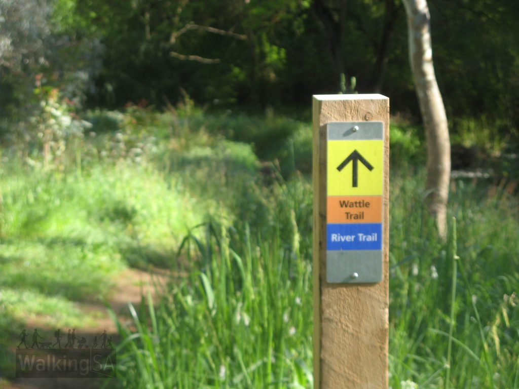 Follow the River Trail and Wattle Trail downstream towards Gunners Run