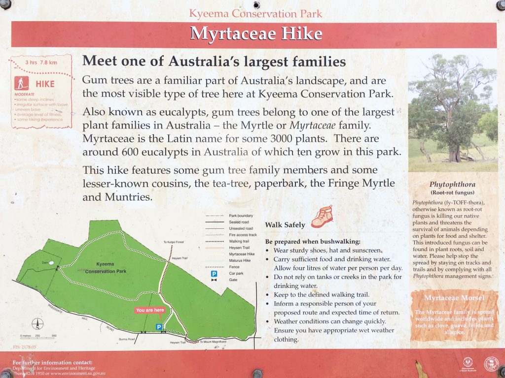 Map of the Myrtaceae Hike in Kyeema Conservation Park