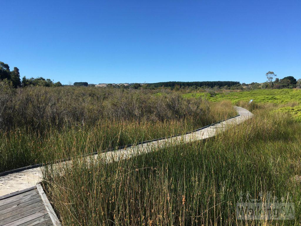 The Mt Compass School Swamp wetlands boardwalk
