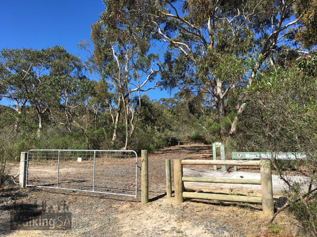 The trailhead at the unnumbered gate on Hindmarsh Tiers Road