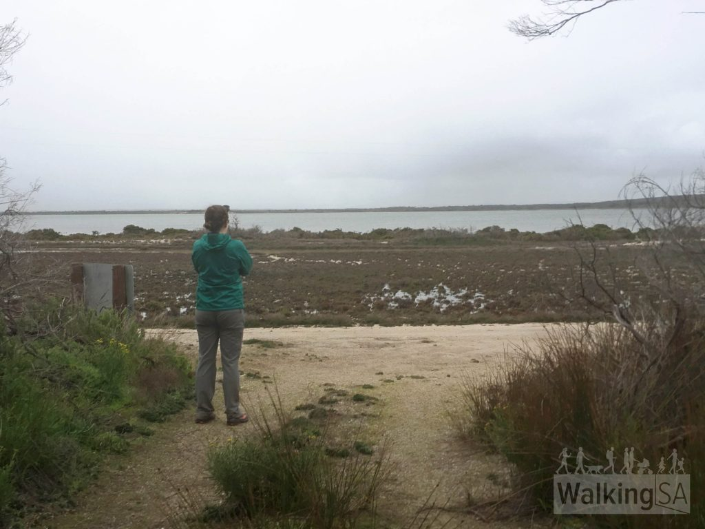 Admiring the view from near the end of the Oyster Walk, near the shacks at Old Oyster Town