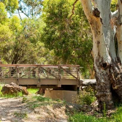 Christie Creek Linear Trail