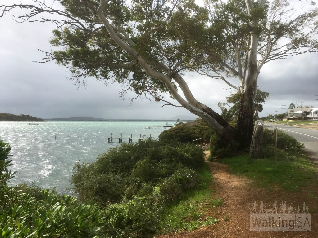 Following the Oyster Walk along the foreshore in Coffin Bay