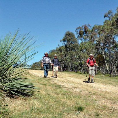 Old Kersbrook Loop and Devils Gully Link Trails, Mount Lofty Ranges Trails, Kersbrook