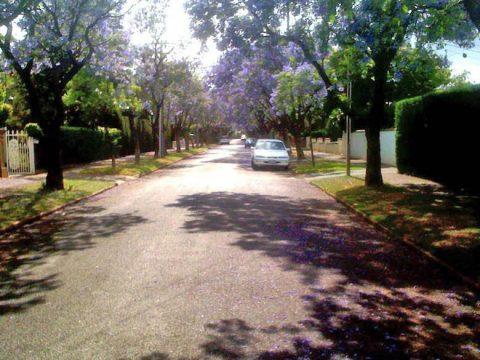 Osmond Grove, Toorak Gardens