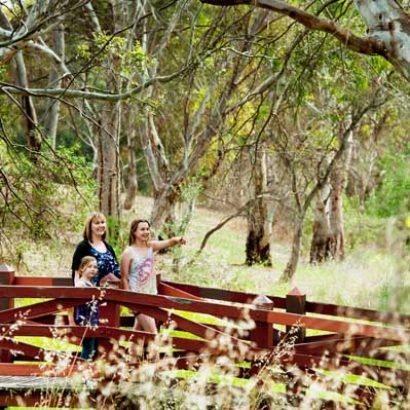 Pedler Creek Trail