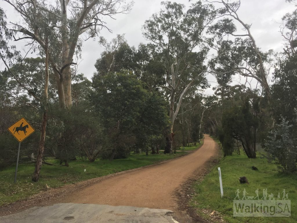 The Simpson Loop Trail follows quiet country lanes and tracks, much of which is part of the Kersbrook Horse Trails network