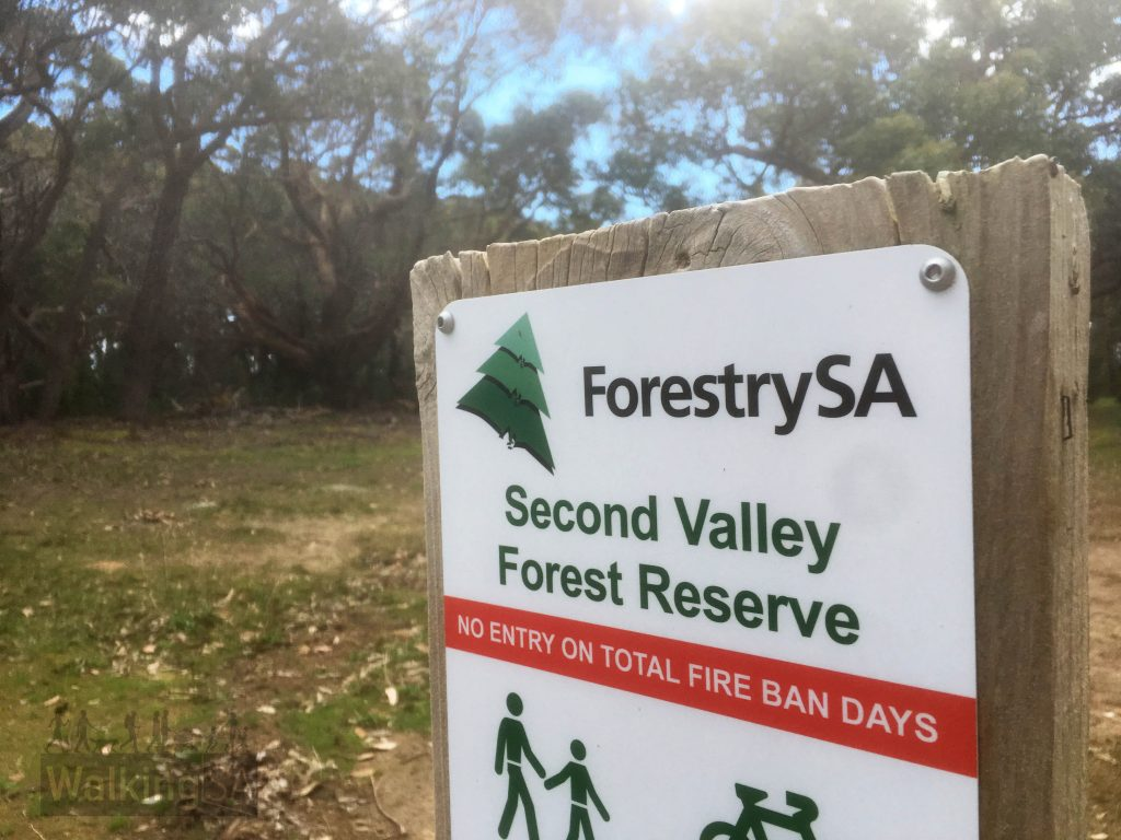 The Mt Hayfield Hike is in Second Valley Forest