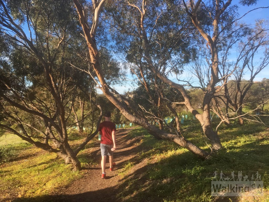 The hiking trail in Marino Conservation Park, the Botanical Trail, is as short pleasant loop