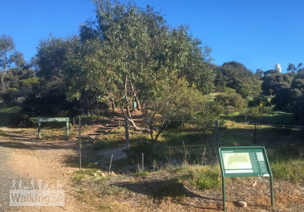 The trailhead for the Botanical Trail in Marino Conservation Park is at the end of Nimboya Road, Marino