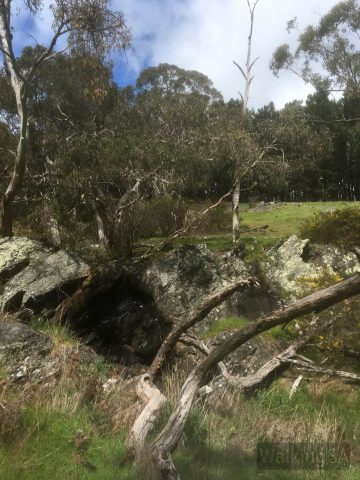 The waterfall on the Mt Hayfield Hike