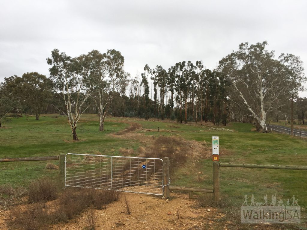 Trailhead of the Anderson Loop Trail at the end of the carpark on South Para Road