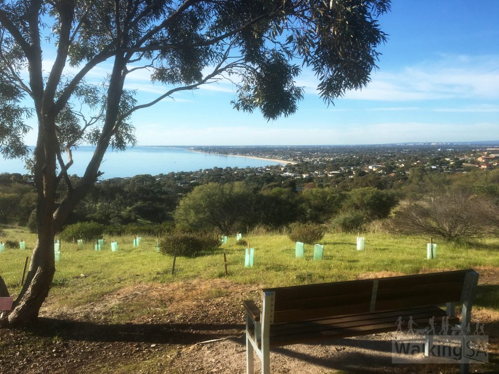 Views over Brighton and the coast from the top of the Botanical Trail in Marino Conservation Park
