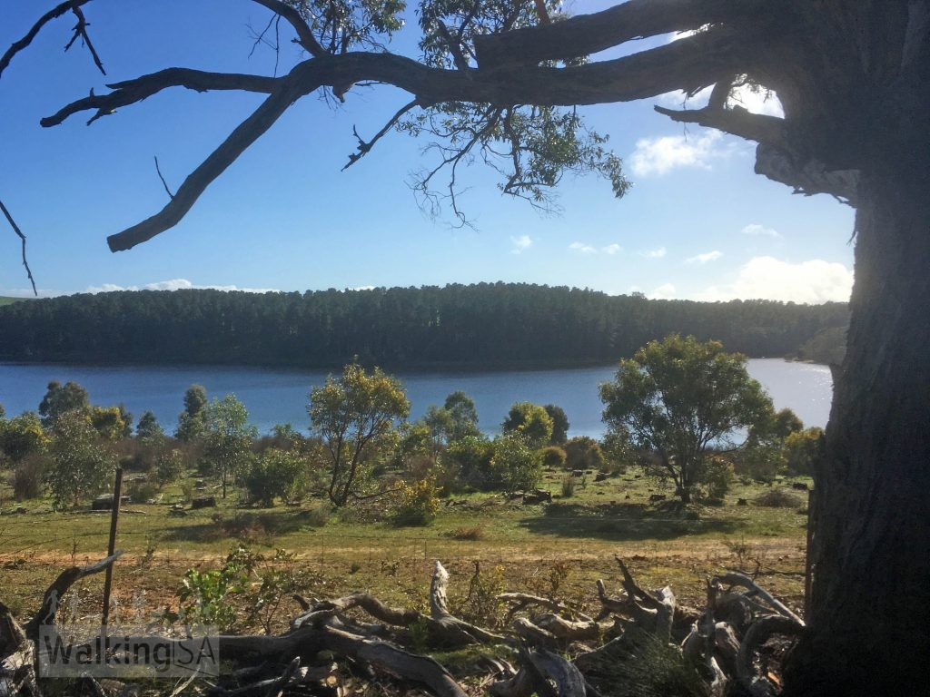Views over Myponga Reservoir from the walking trail in Nixon-Skinner Conservation Park