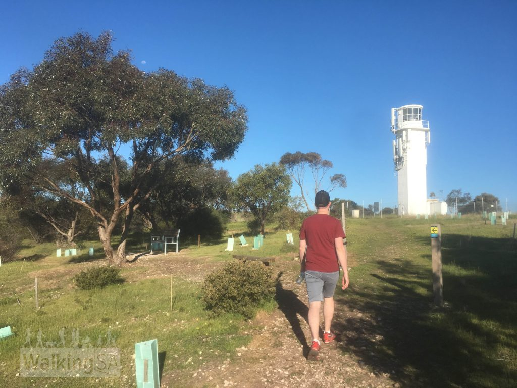 Walking towards the lighthouse on the Botanical Trail in Marino Conservation Park