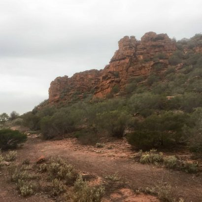 Wild Dog Hill Hike, Whyalla