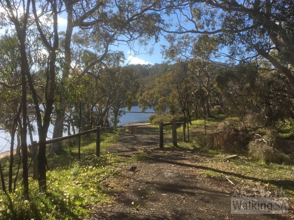 The walk in follows an old road, the walk ends at Gate 26 where the old road has been submerged in Myponga Reservoir