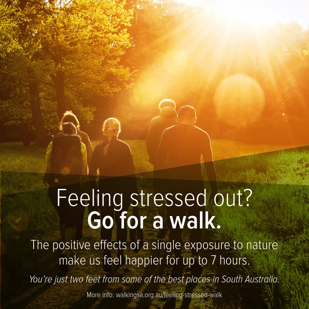 Feeling stressed out? Go for a walk. The positive effects of a single exposure to nature make us feel happier for up to 7 hours.